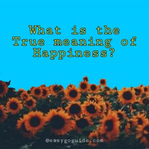 What is the True meaning of Happiness?